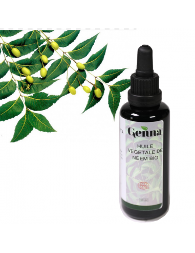 Organic Oil plant of Neem